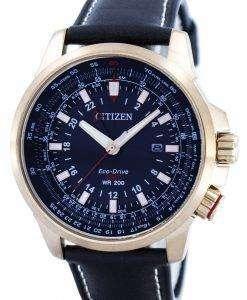 市民プロマスター エコ ・ ドライブ GMT BJ7073-08E メンズ腕時計