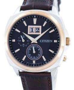 シチズンエコ ドライブ パーペチュアル カレンダー BT0084 07E メンズ腕時計