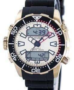 市民アクアランド プロマスター ダイバーズ 200 M アナログ デジタル JP1093-11 P メンズ腕時計