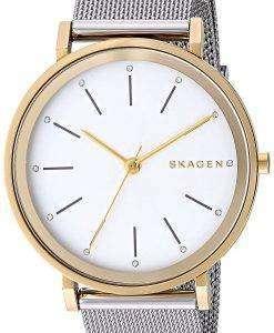スカーゲン Hald 石英 SKW2508 レディース腕時計