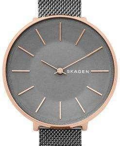 スカーゲン カロリーナ石英 SKW2689 レディース腕時計