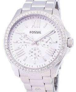 化石セシール多機能クリスタル ステンレス鋼 AM4481 レディース腕時計