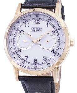 市民エコドライブの日と日付のサブダイヤル AO9003 16A メンズ腕時計