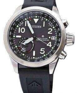 市民プロマスター CC 3060 10E エコドライブ GPS 衛星波 200 M メンズ腕時計