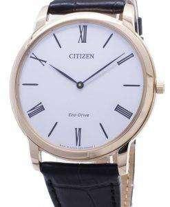 シチズン エコ ・ ドライブ Stilleto 超薄型 AR1113-12B メンズ腕時計