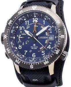 シチズンエコ・ドライブプロマスターBN4055-19L限定版200Mメンズ腕時計