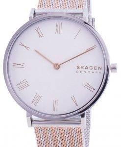 スカーゲンHald SKW2815クォーツレディース腕時計